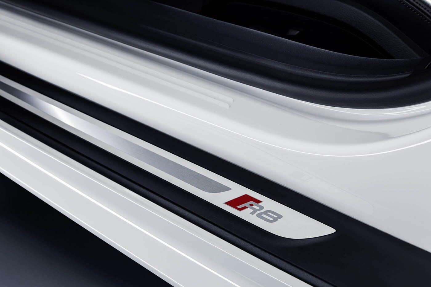 """Audi giới thiệu """"hàng hiếm"""" R8 V10 RWS - Hình 13"""