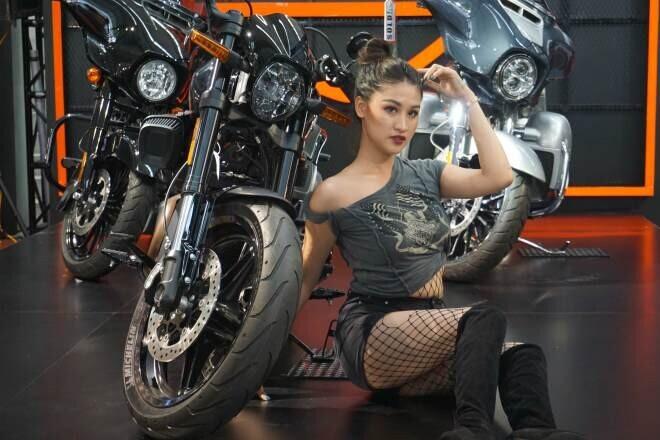 Bảng giá Harley Davidson mới nhất tại Việt Nam: Xe cho giới siêu giàu - Hình 1