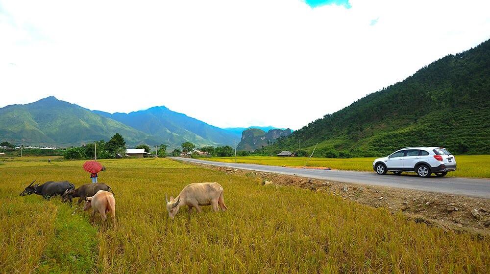 Đánh giá Chevrolet Captiva LTZ 2014 qua hành trình 1000km - Hình 8
