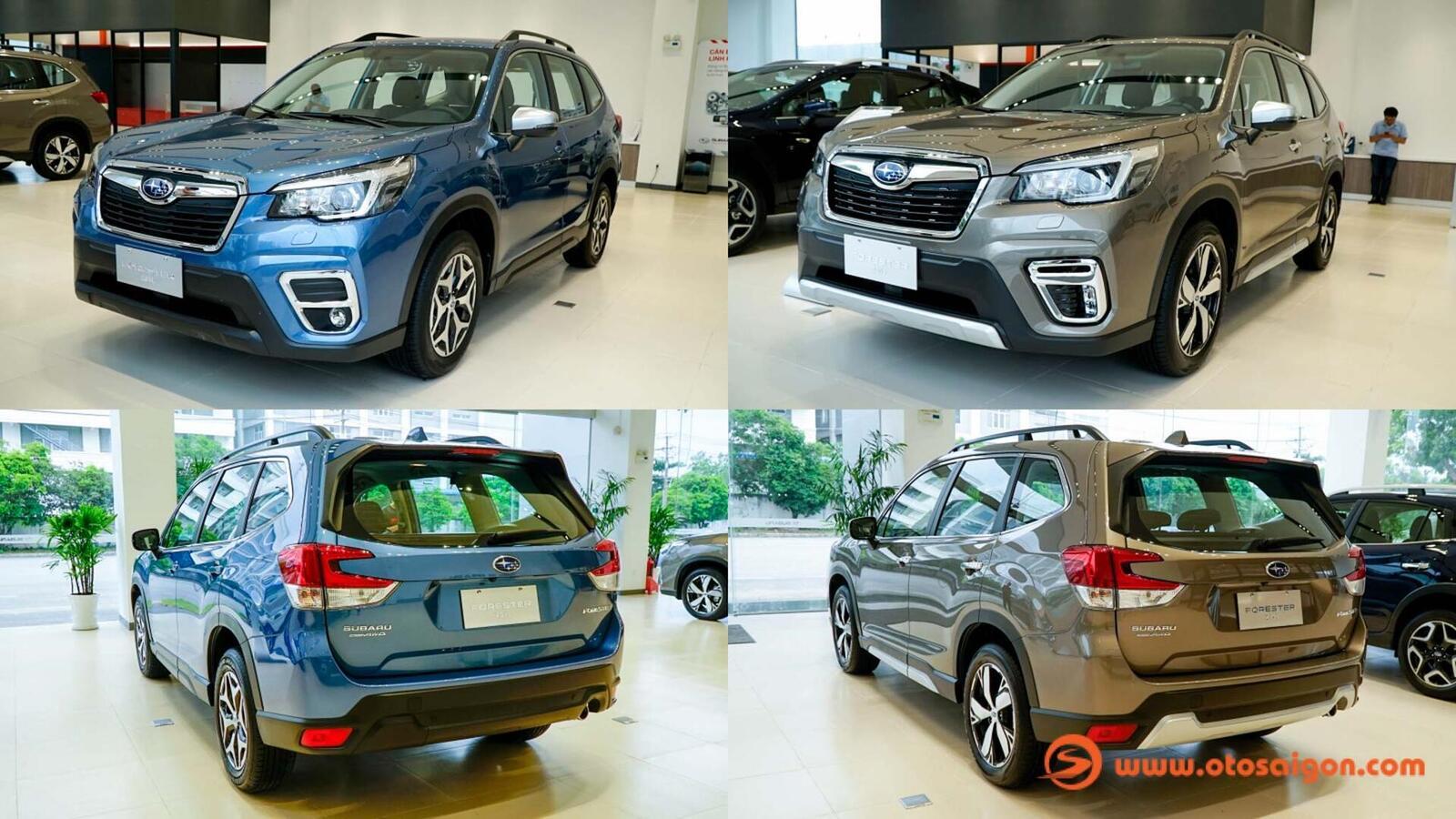 Đánh giá nhanh Subaru Forester thế hệ mới và sự khác biệt giữa hai phiên bản - Hình 1