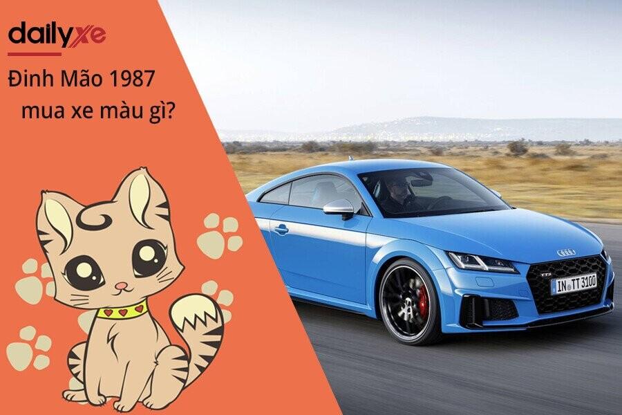 Nam Nữ Đinh Mão 1987 mua xe màu gì?