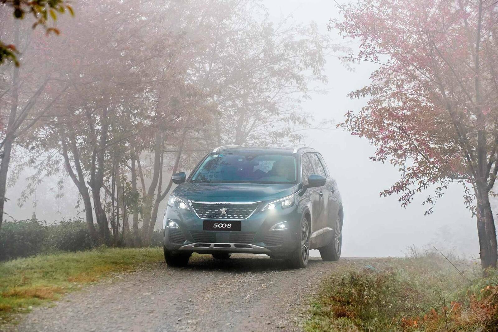 Doanh số tăng trưởng vượt bậc, Peugeot tiếp tục đẩy mạnh ưu đãi dịch vụ hậu mãi - Hình 3