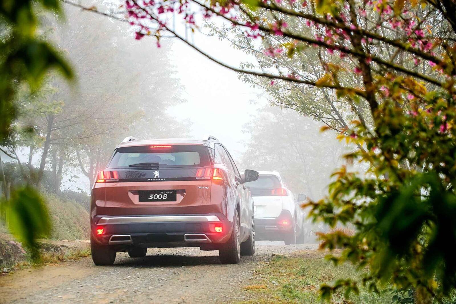 Doanh số tăng trưởng vượt bậc, Peugeot tiếp tục đẩy mạnh ưu đãi dịch vụ hậu mãi - Hình 4