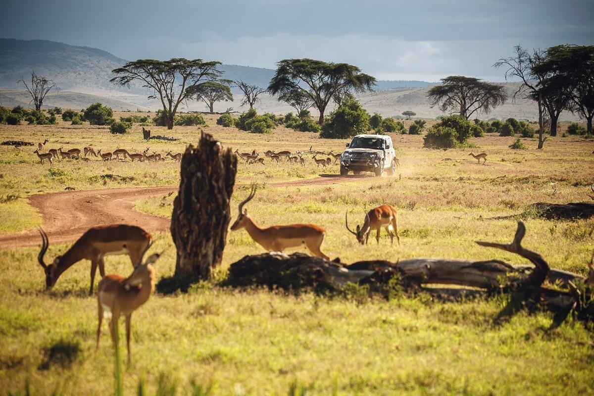 Land Rover Defender 2020 thử thách sức bền tại Kenya, chuẩn bị ra mắt trong năm nay - Hình 10