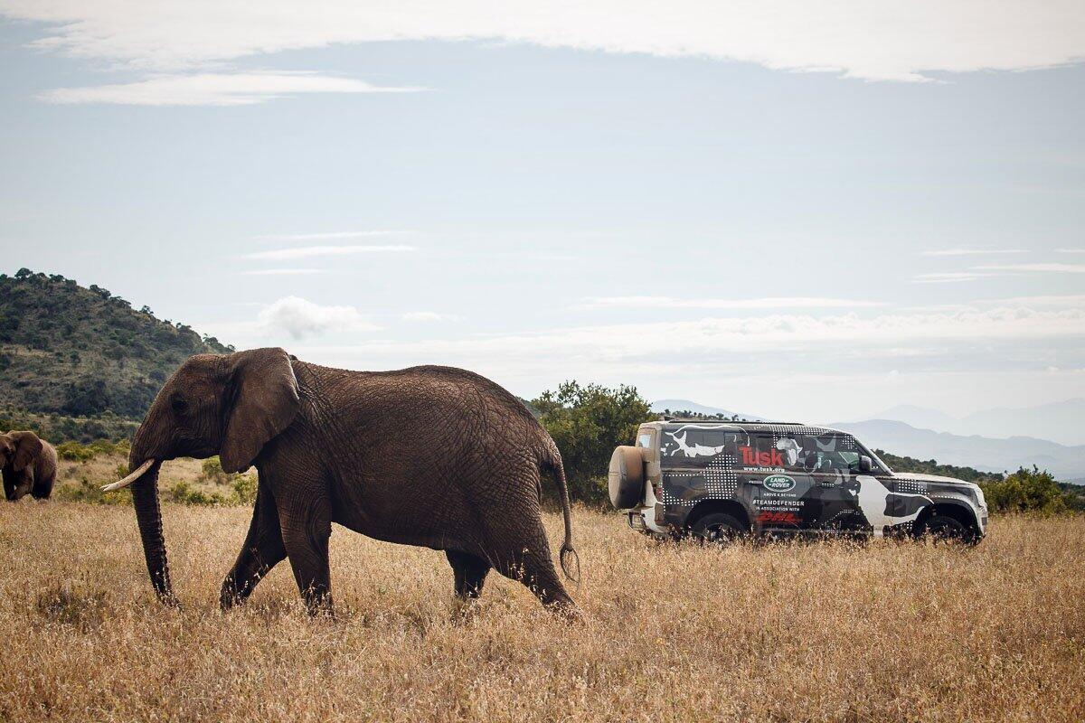 Land Rover Defender 2020 thử thách sức bền tại Kenya, chuẩn bị ra mắt trong năm nay - Hình 8