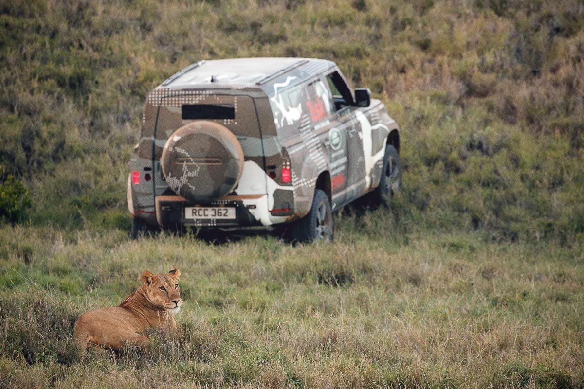 Land Rover Defender 2020 thử thách sức bền tại Kenya, chuẩn bị ra mắt trong năm nay - Hình 9