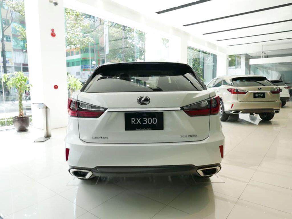 Lexus RX 300 mới giá hơn 3 tỷ, về Việt Nam thay thế cho RX 200t - Hình 2