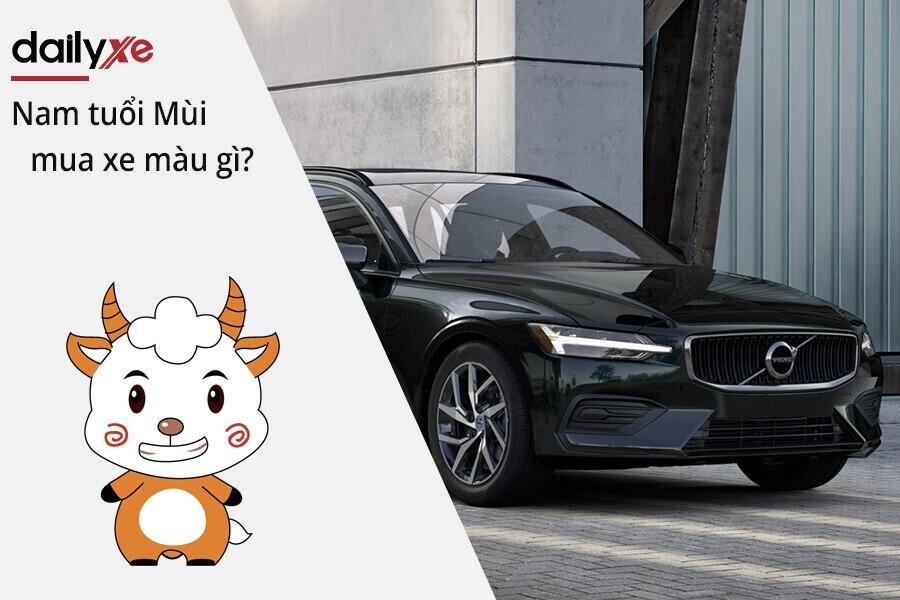 Nam tuổi Mùi mua xe màu gì hợp năm Tân Sửu 2021 ? | DailyXe