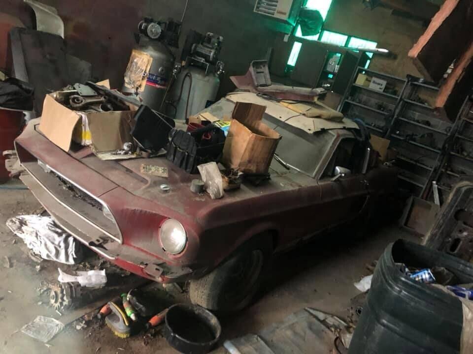 'Ngua hoang' Ford Mustang doi dau bo hoang 30 nam trong nha kho hinh anh 1 1.jpg