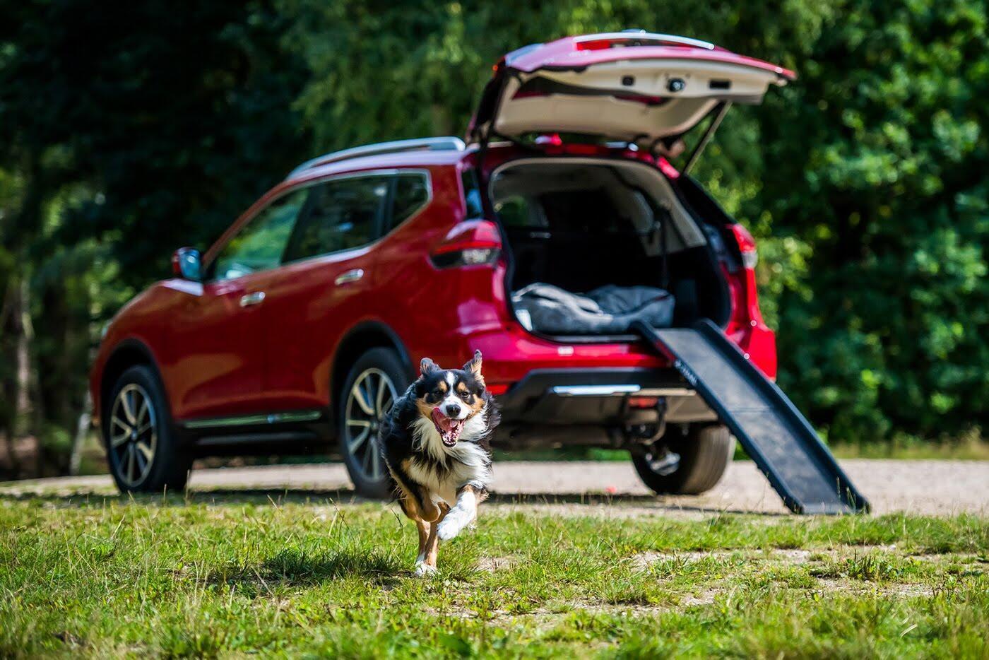 """Nissan X-Trail bổ sung thêm gói trang bị dành cho """"Cún yêu"""" - Hình 1"""