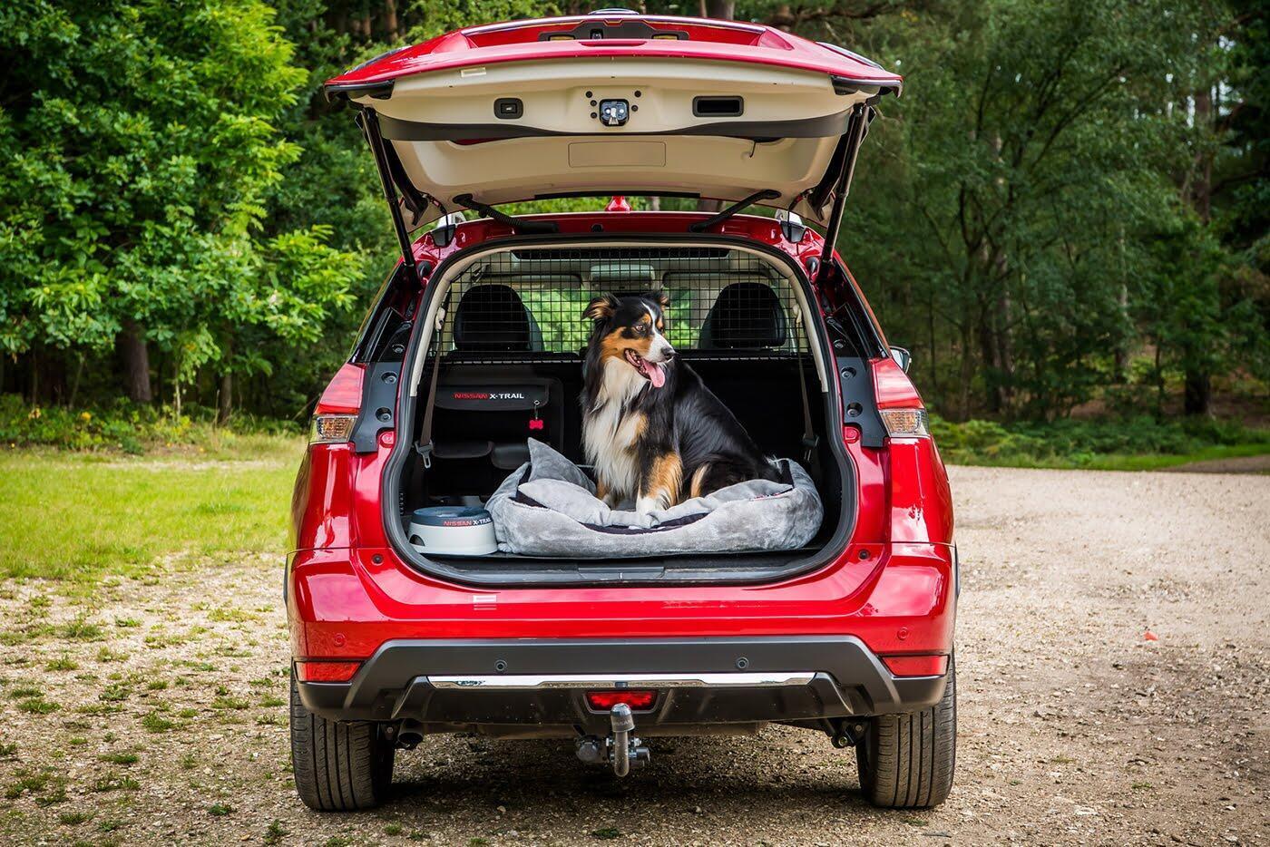 """Nissan X-Trail bổ sung thêm gói trang bị dành cho """"Cún yêu"""" - Hình 3"""