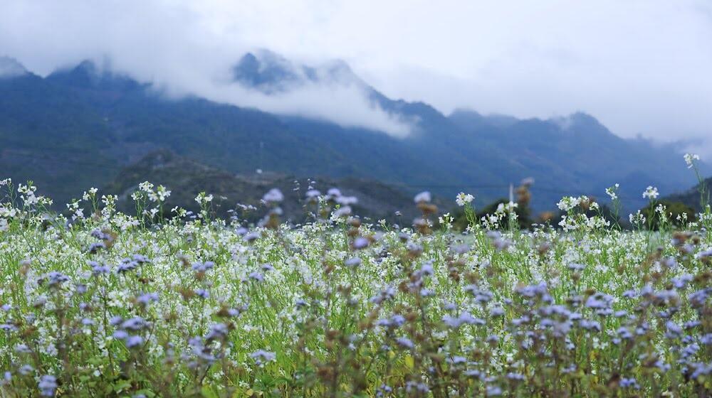 Outlander Sport trên cung đường cảm xúc - Hình 38