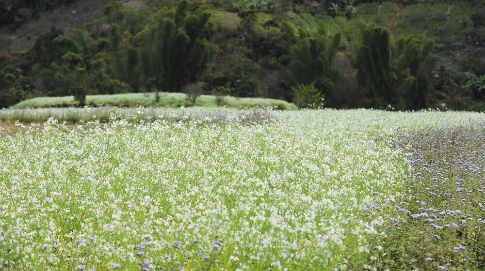 Outlander Sport trên cung đường cảm xúc - Hình 39