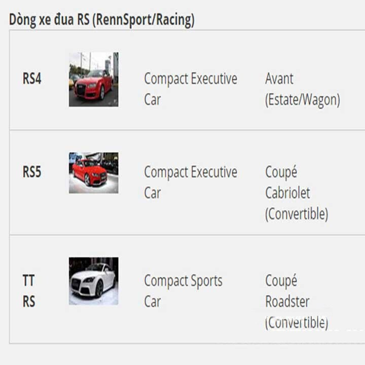 Dòng xe đua RS