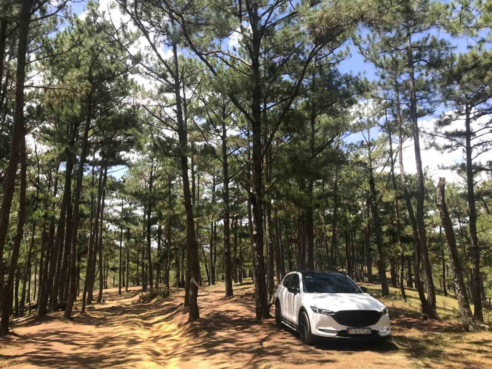Trang điểm nhẹ cho Mazda CX-5 - Hình 3
